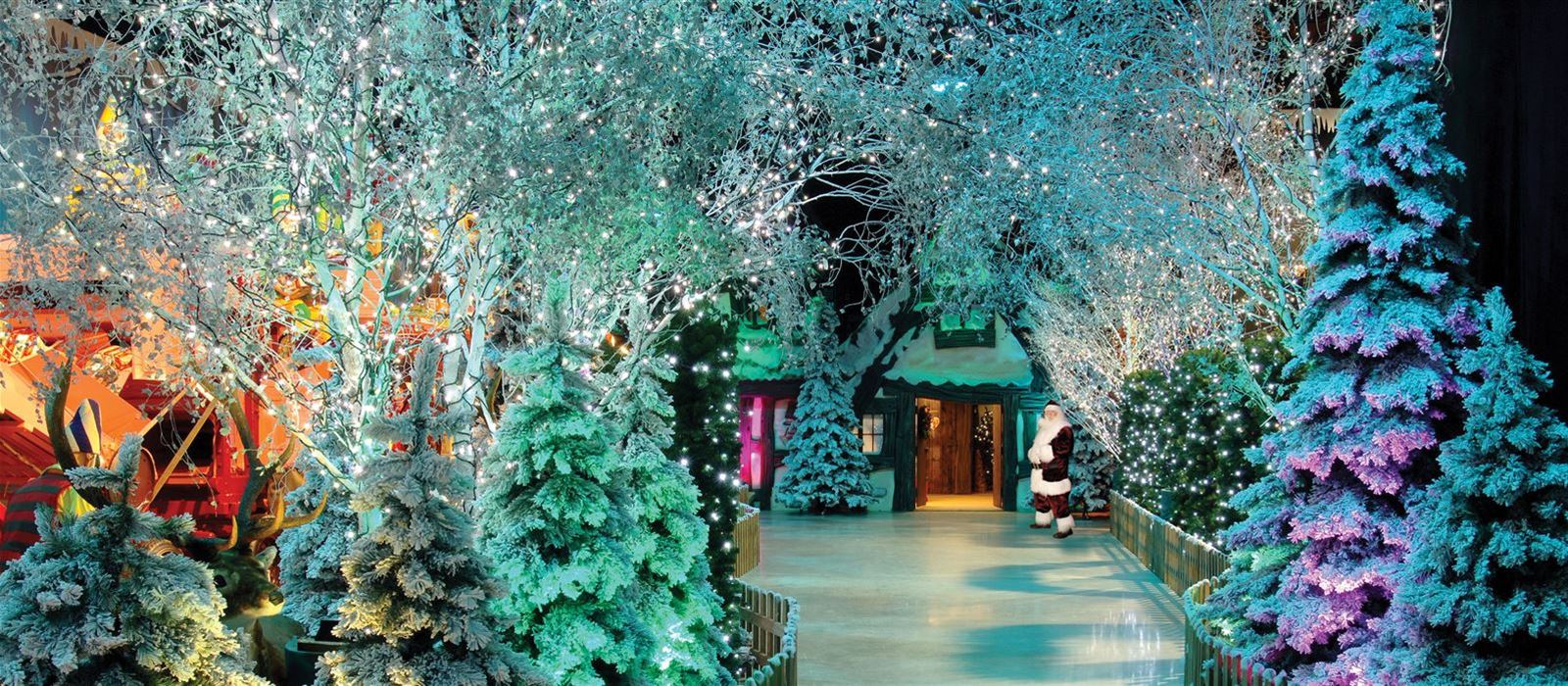 Christmas winter wonderland pictures