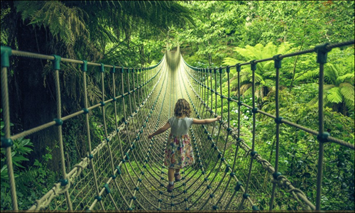 Child crossing the Burmese Rope Bridge at The Jungle, Heligan
