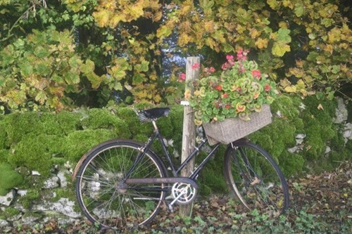 Bike perched near some trees and flowers