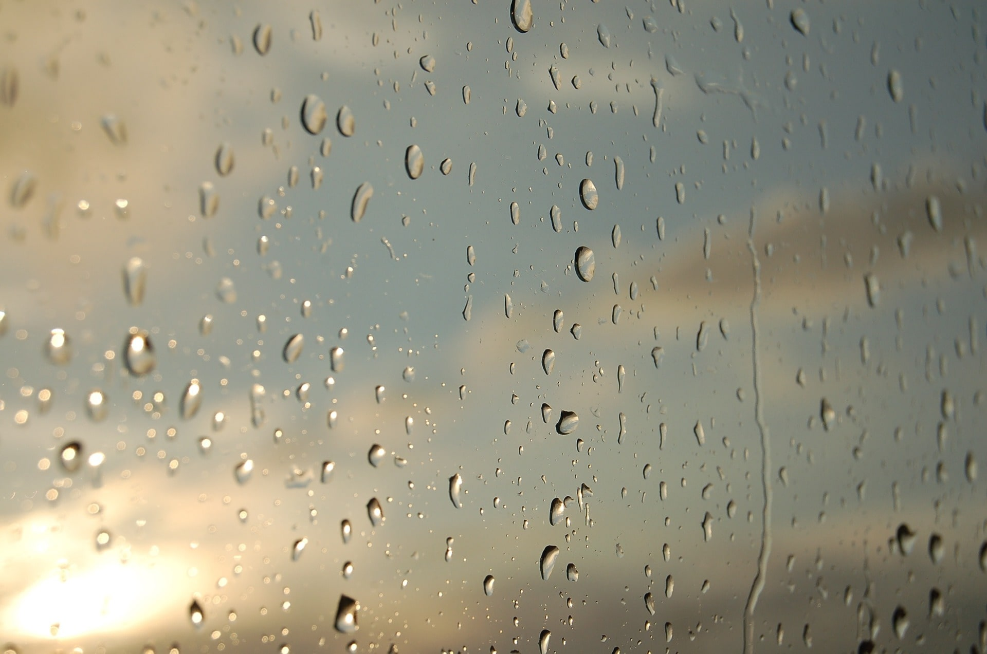 Droplets of rain against a window