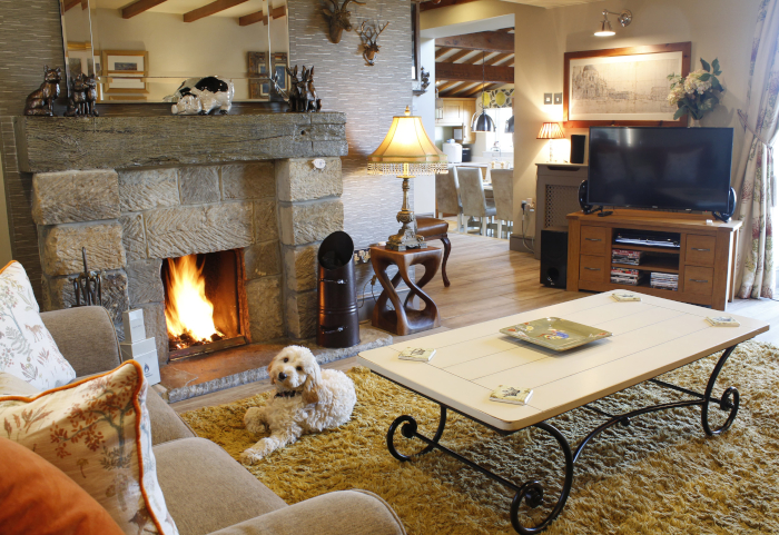 Dog relaxing in front of the fire in a luxury holiday cottage