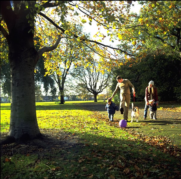 Family of 4 walking on a leafy path in a park
